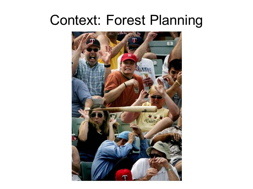 Context: Forest Planning