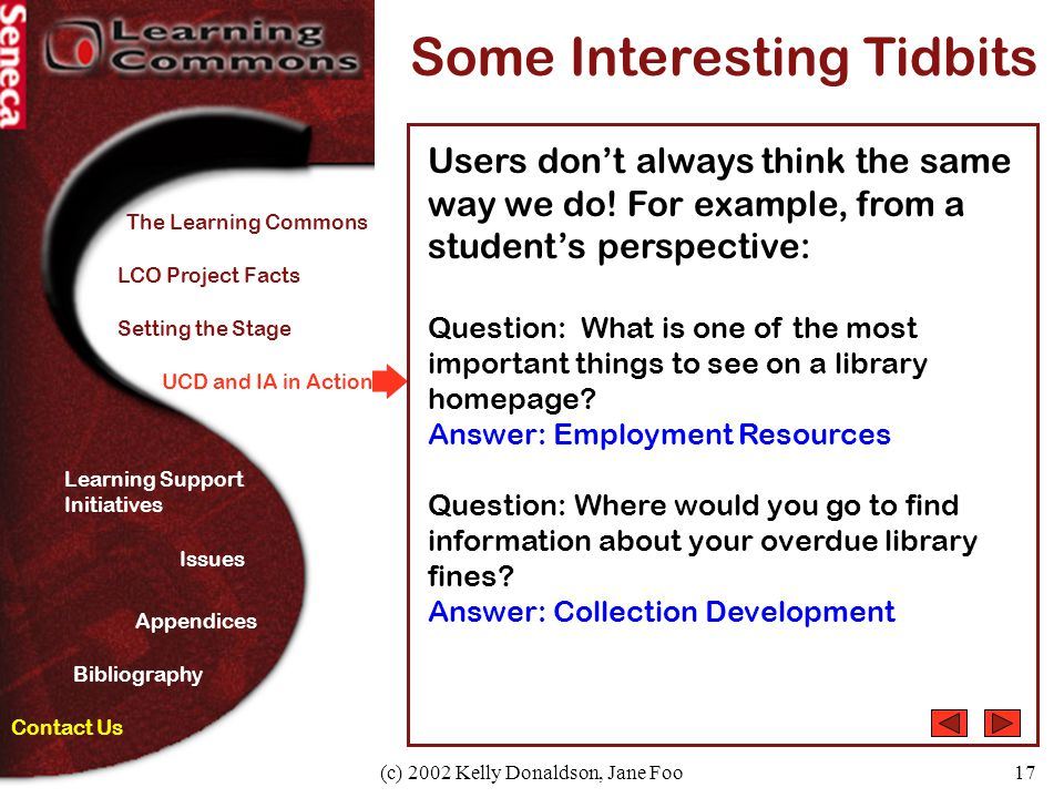 (c) 2002 Kelly Donaldson, Jane Foo17 UCD and IA in Action Some Interesting Tidbits Users don't always think the same way we do.