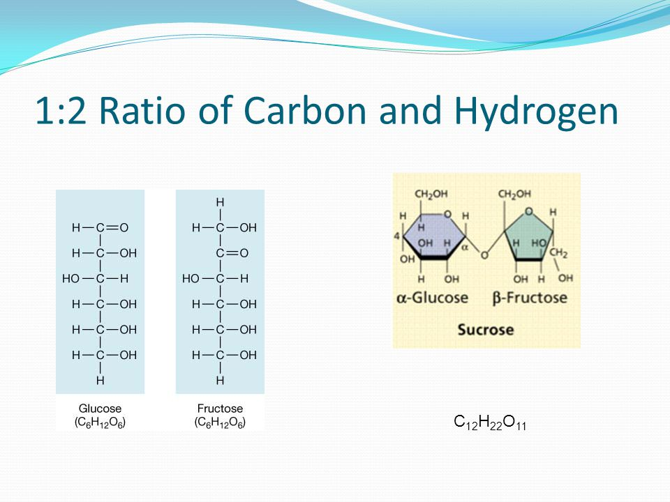1:2 Ratio of Carbon and Hydrogen C 12 H 22 O 11
