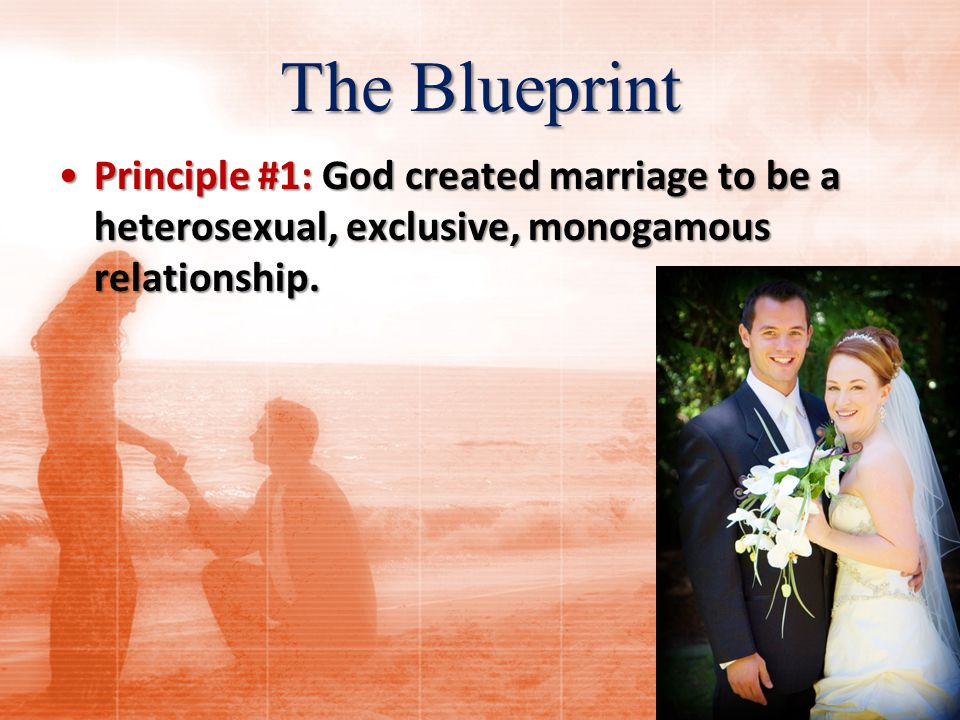 The Blueprint 6 But from the beginning of creation, God MADE THEM MALE AND FEMALE.