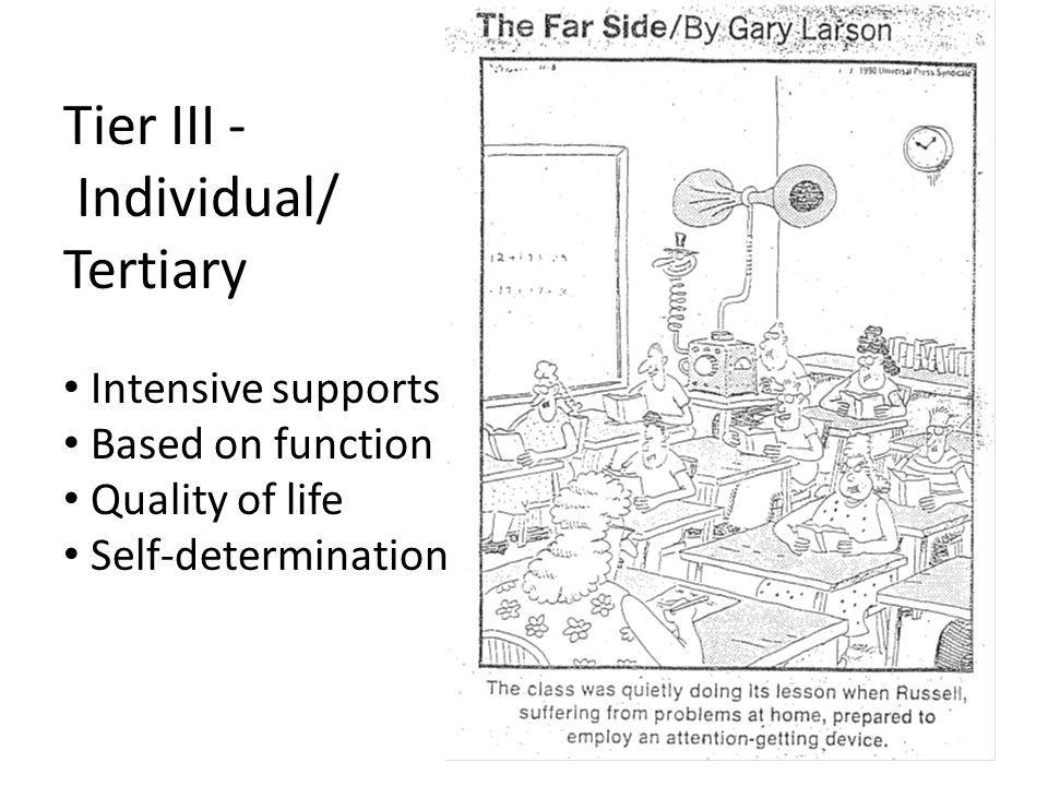 Tier III - Individual/ Tertiary Intensive supports Based on function Quality of life Self-determination
