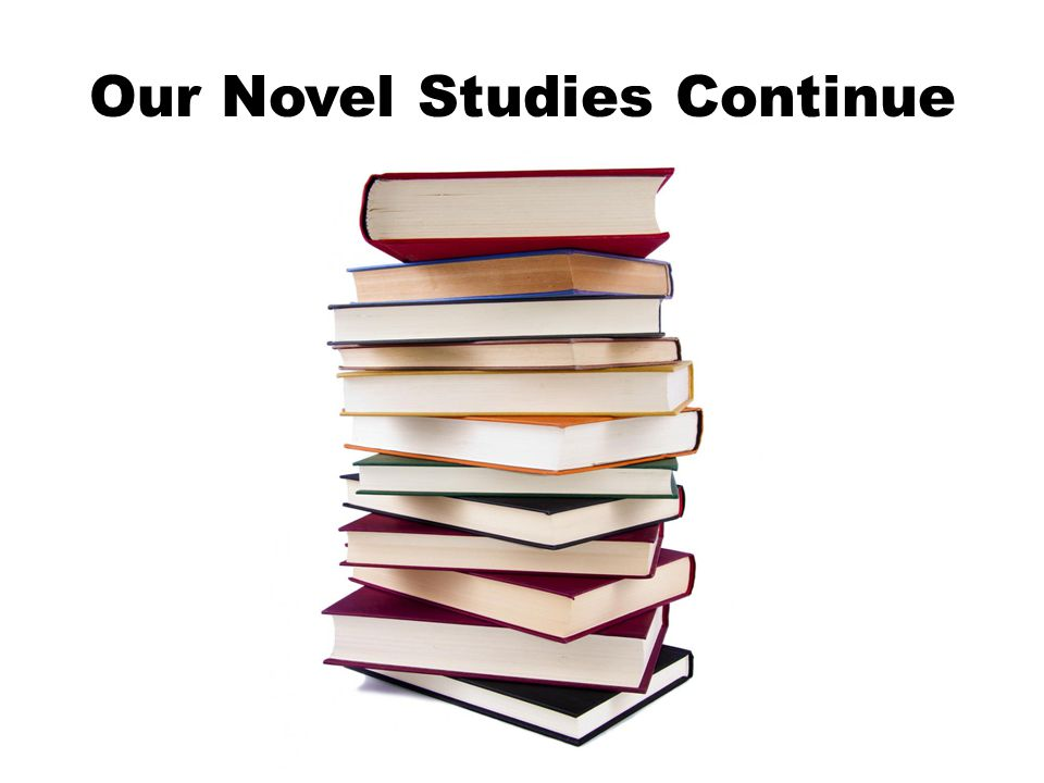 Our Novel Studies Continue