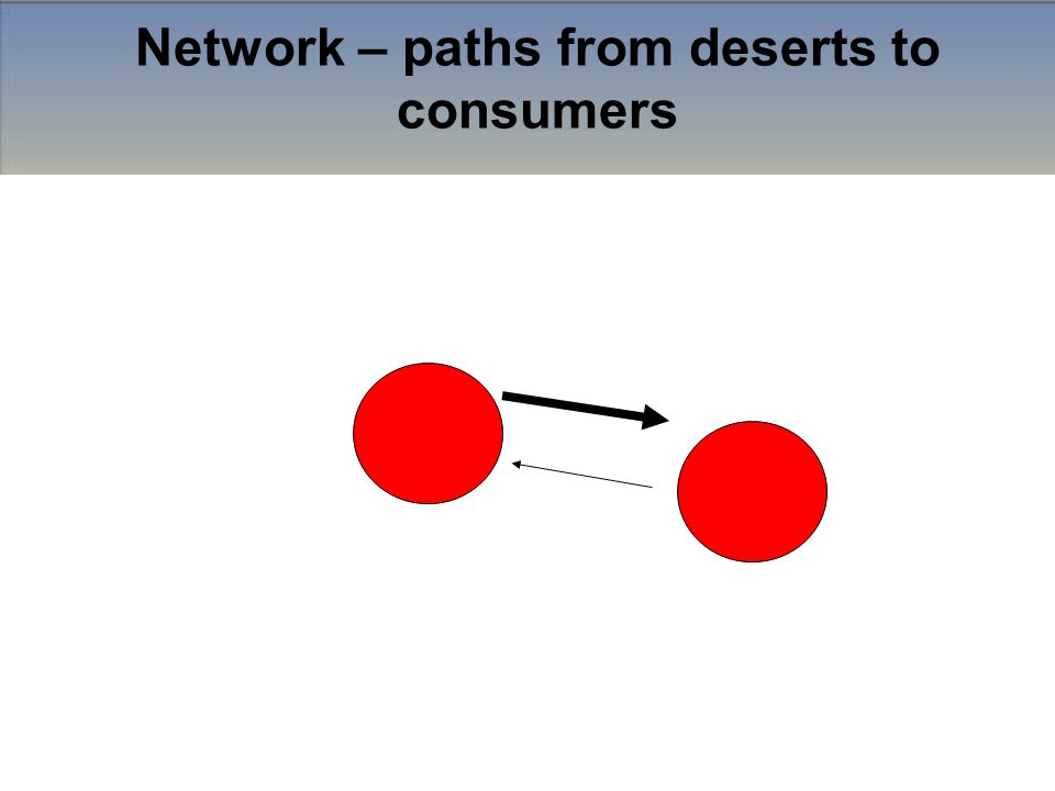 Network – paths from deserts to consumers
