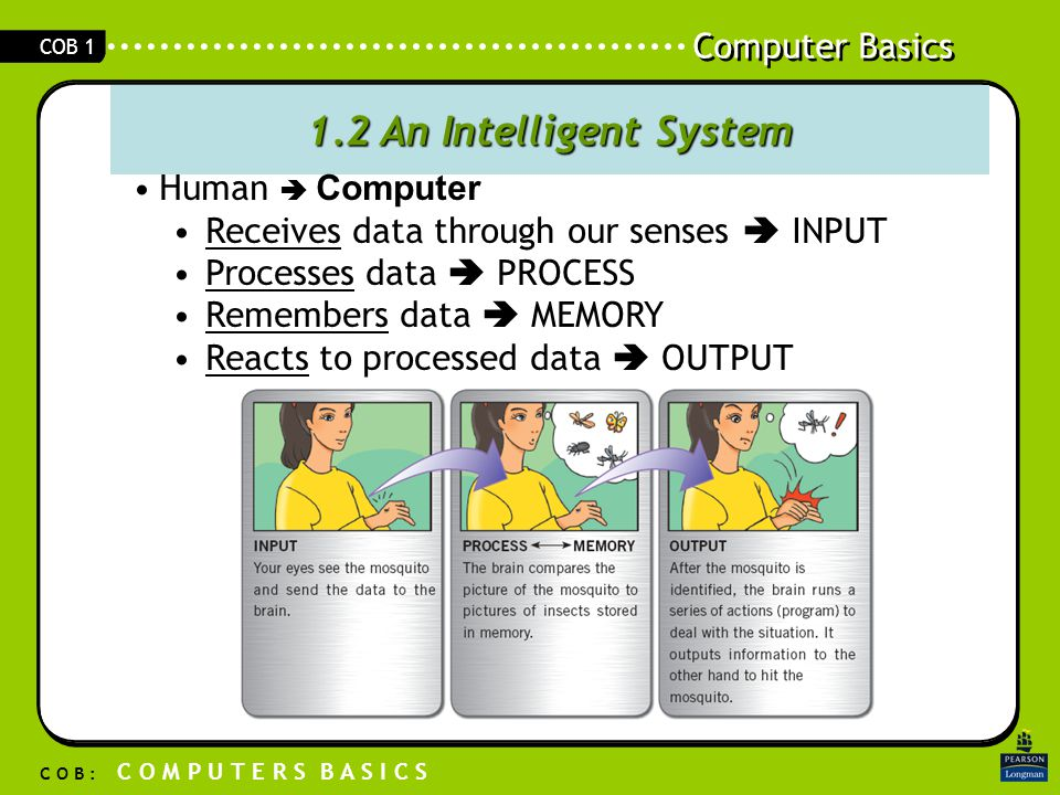 Computer Basics C O B : C O M P U T E R S B A S I C S COB 1 1.2 An Intelligent System Human  Computer Receives data through our senses  INPUT Processes data  PROCESS Remembers data  MEMORY Reacts to processed data  OUTPUT