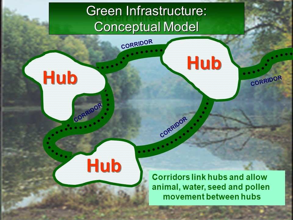 CORRIDOR Core Hub Hubs are groupings of core areas bounded by major roads or unsuitable land cover Corridors link hubs and allow animal, water, seed a