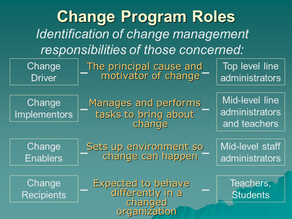 Change Program Roles The principal cause and motivator of change Change Driver Identification of change management responsibilities of those concerned