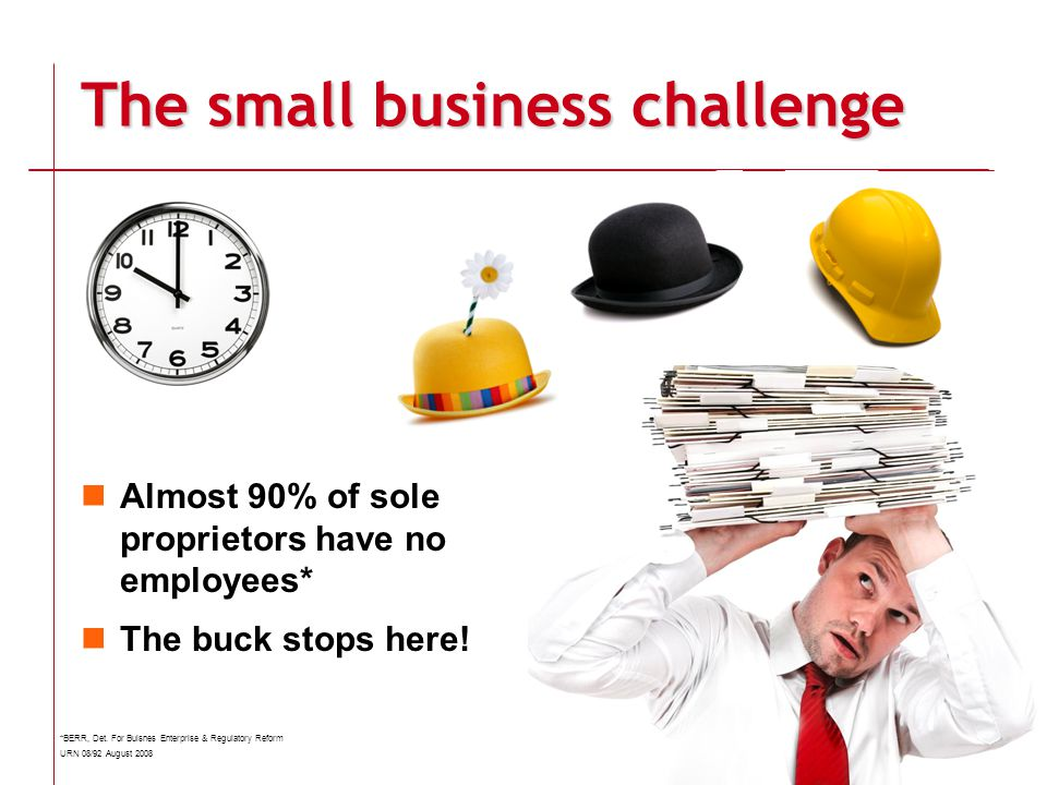 The small business challenge Almost 90% of sole proprietors have no employees* The buck stops here.