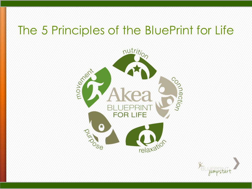 The 5 Principles of the BluePrint for Life