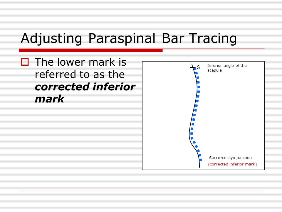 Adjusting Paraspinal Bar Tracing  The lower mark is referred to as the corrected inferior mark S Sacro-coccyx junction Inferior angle of the scapula (corrected inferior mark)