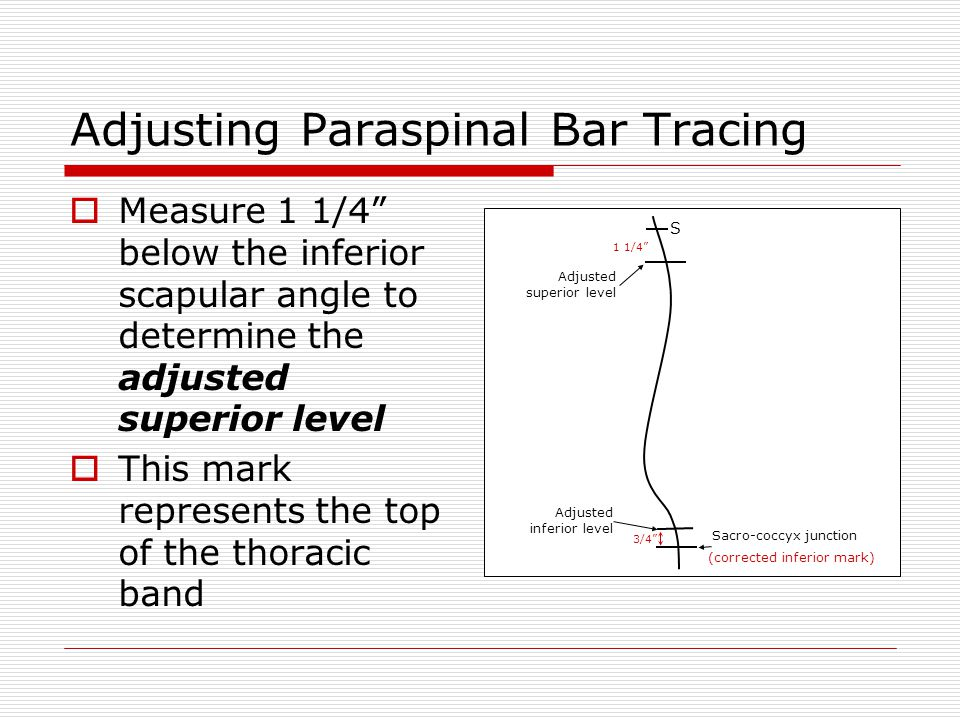 Adjusting Paraspinal Bar Tracing  Measure 1 1/4 below the inferior scapular angle to determine the adjusted superior level  This mark represents the top of the thoracic band S 3/4 Adjusted inferior level Sacro-coccyx junction (corrected inferior mark) Adjusted superior level 1 1/4