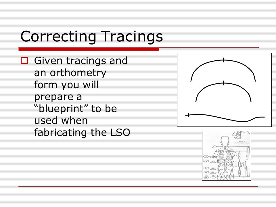 Correcting Tracings  You will begin by correcting the pelvic and thoracic bands