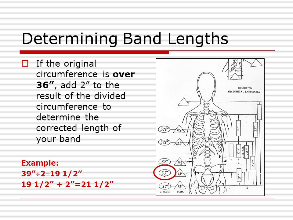 Adjusting Band Tracing  Divide the corrected length in half  Using a flexible tape measure following the traced line, measure the resultant distance from the center line to both ends of the tracing and mark