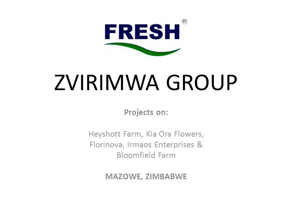 ZVIRIMWA GROUP Projects on: Heyshott Farm, Kia Ora Flowers, Florinova, Irmaos Enterprises & Bloomfield Farm MAZOWE, ZIMBABWE