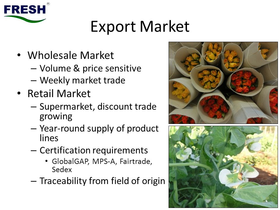 Export Market Wholesale Market – Volume & price sensitive – Weekly market trade Retail Market – Supermarket, discount trade growing – Year-round supply of product lines – Certification requirements GlobalGAP, MPS-A, Fairtrade, Sedex – Traceability from field of origin
