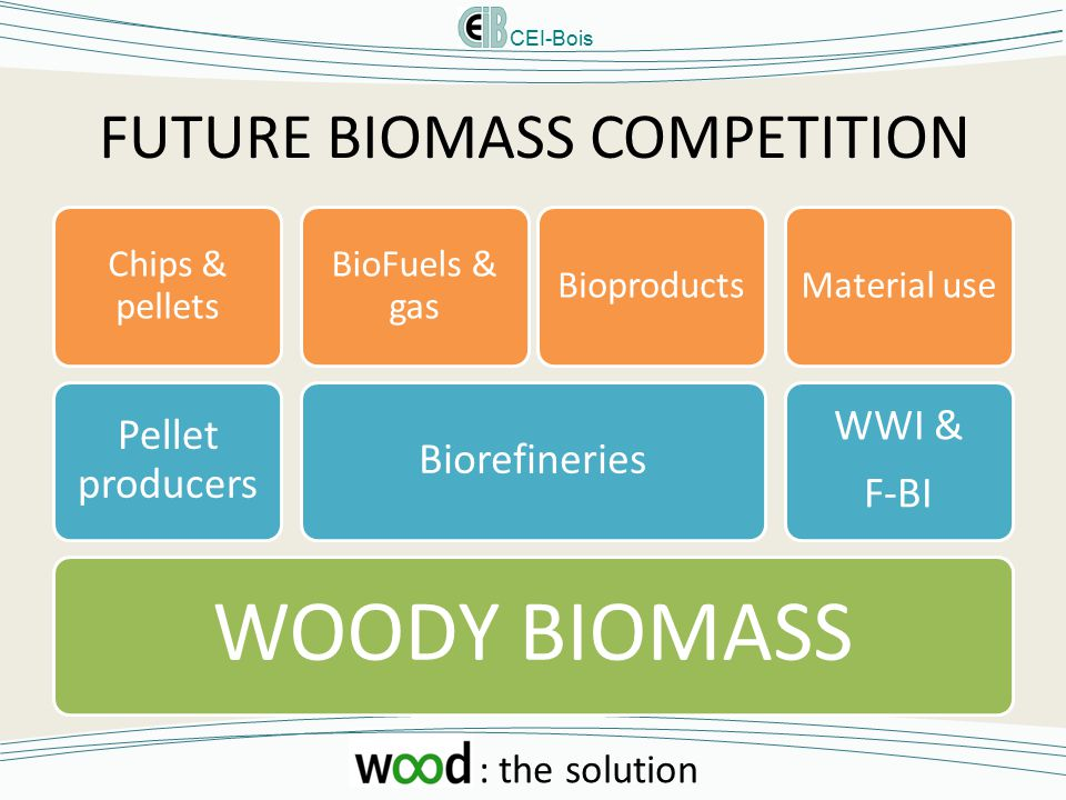 CEI-Bois : the solution FUTURE BIOMASS COMPETITION WOODY BIOMASS Pellet producers Chips & pellets Biorefineries BioFuels & gas Bioproducts WWI & F-BI Material use