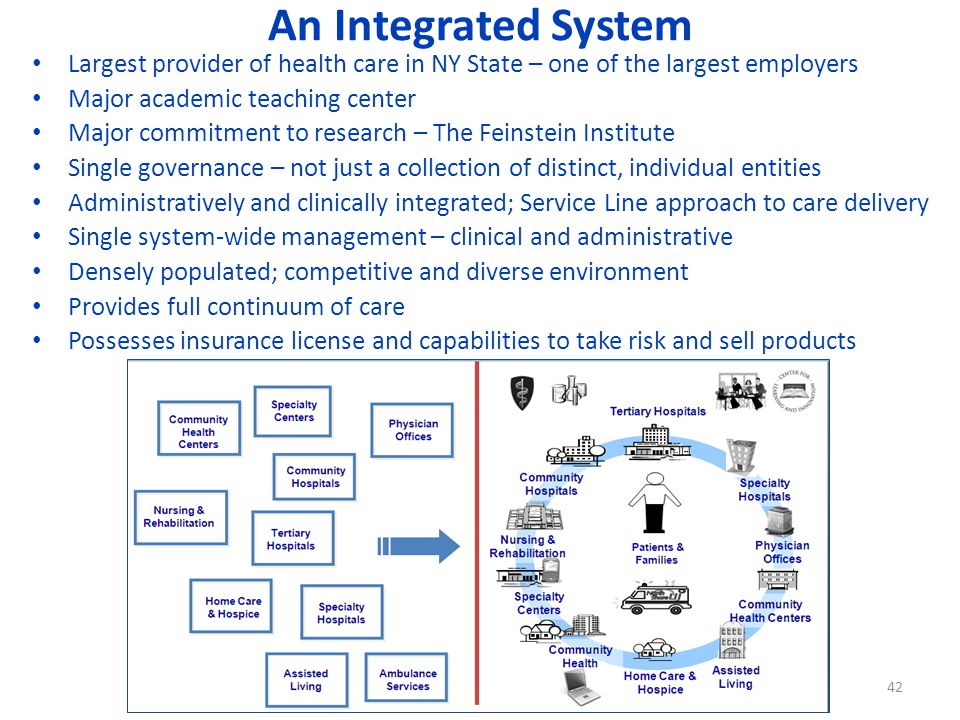 An Integrated System Largest provider of health care in NY State – one of the largest employers Major academic teaching center Major commitment to research – The Feinstein Institute Single governance – not just a collection of distinct, individual entities Administratively and clinically integrated; Service Line approach to care delivery Single system-wide management – clinical and administrative Densely populated; competitive and diverse environment Provides full continuum of care Possesses insurance license and capabilities to take risk and sell products 42