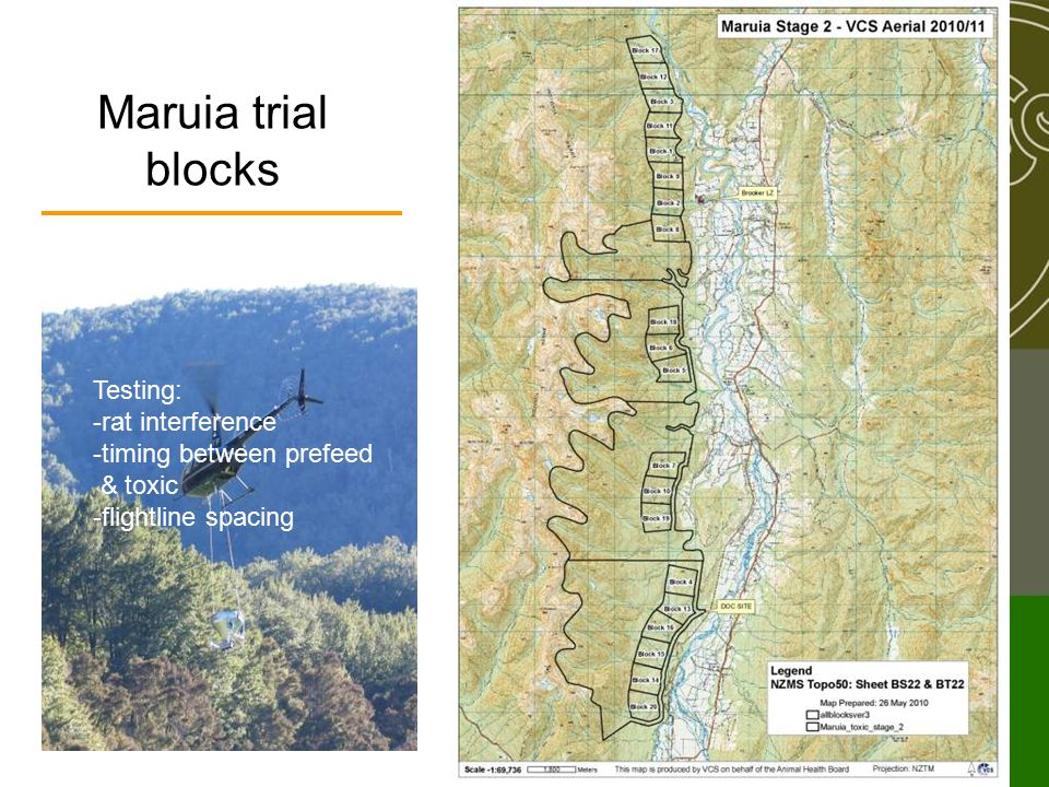 Maruia trial blocks Testing: -rat interference -timing between prefeed & toxic -flightline spacing