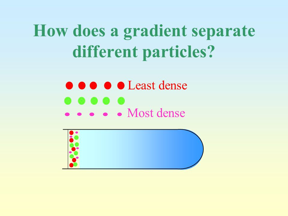 How does a gradient separate different particles? Least dense Most dense