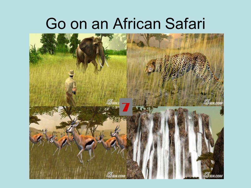 Go on an African Safari 7