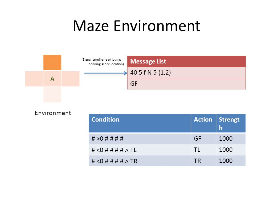 Maze Environment A Environment Message List 40 5 f N 5 (1,2) GF ConditionActionStrengt h # >0 # # # #GF1000 # <0 # # # # ∧ TL TL1000 # <0 # # # # ∧ TR TR1000 (Signal smell-ahead bump heading score location)