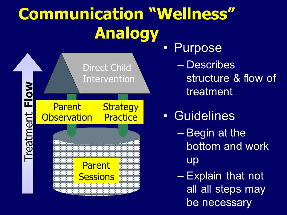 Purpose –Describes structure & flow of treatment Guidelines –Begin at the bottom and work up –Explain that not all all steps may be necessary Communication Wellness Analogy Direct Child Intervention Treatment Flow Parent Observation Strategy Practice Parent Sessions