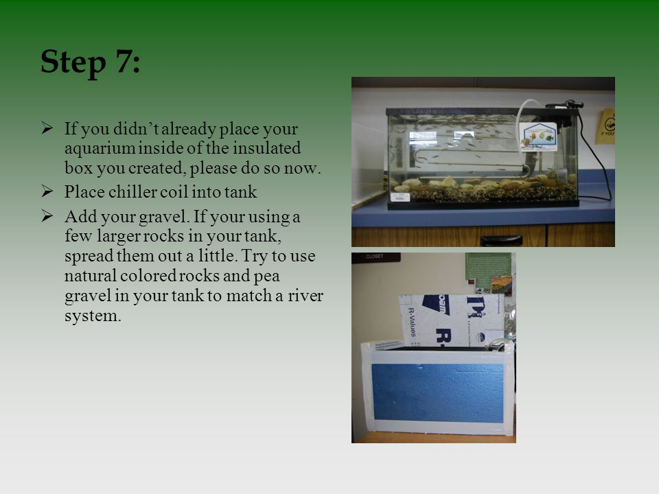 Step 7:  If you didn't already place your aquarium inside of the insulated box you created, please do so now.