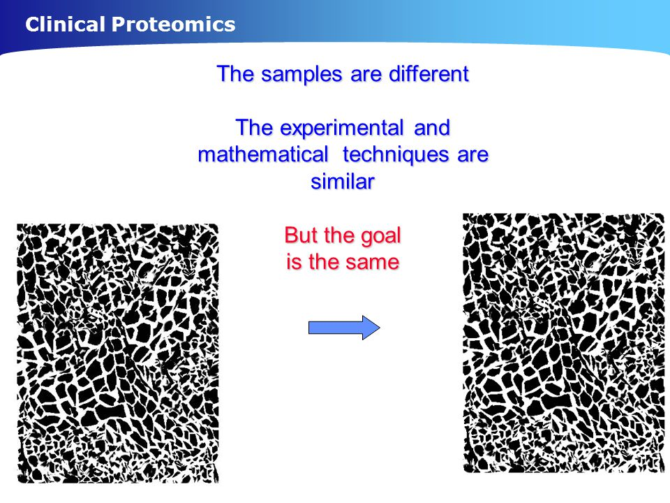 Clinical Proteomics The samples are different The experimental and mathematical techniques are similar But the goal is the same