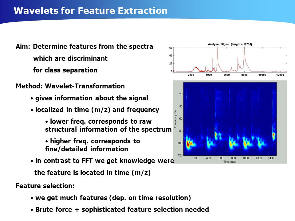Wavelets for Feature Extraction Aim: Determine features from the spectra which are discriminant for class separation Method: Wavelet-Transformation gives information about the signal localized in time (m/z) and frequency lower freq.