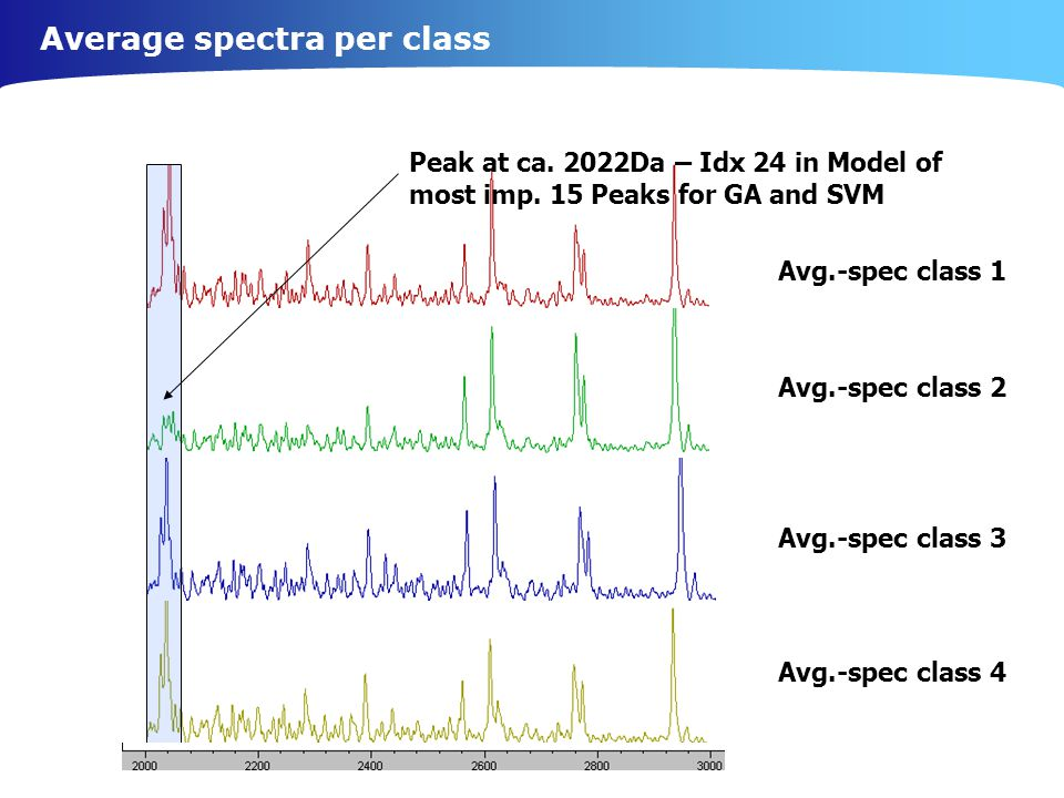 Average spectra per class Peak at ca.2022Da – Idx 24 in Model of most imp.