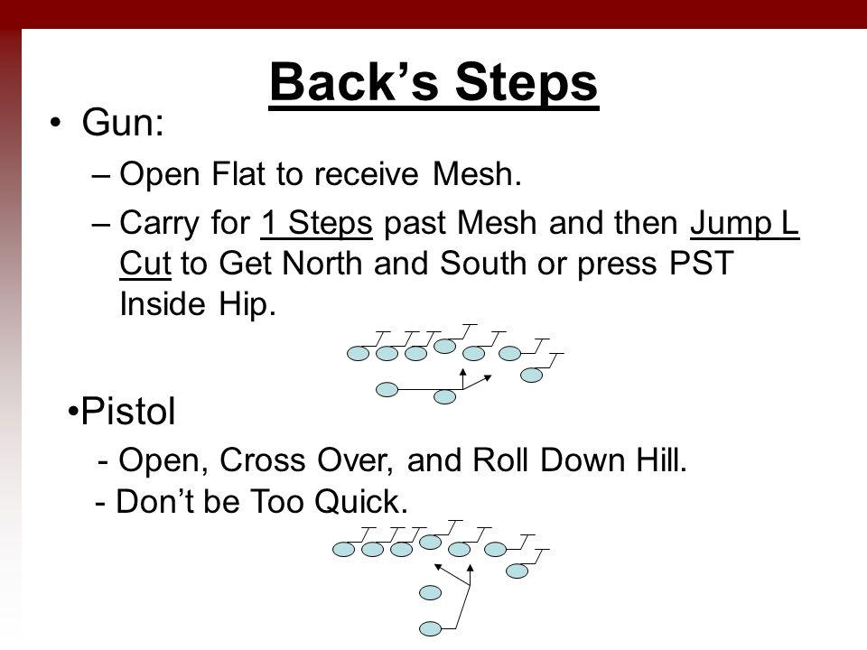 Back's Steps Gun: –Open Flat to receive Mesh.