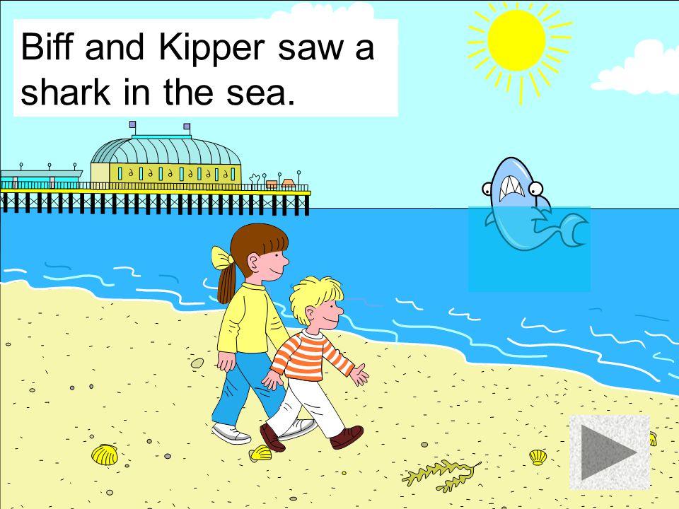 Biff and Kipper saw a boat in the sea.