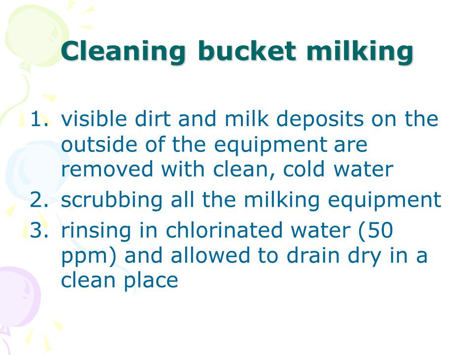 Cleaning bucket milking 1.visible dirt and milk deposits on the outside of the equipment are removed with clean, cold water 2.scrubbing all the milking equipment 3.rinsing in chlorinated water (50 ppm) and allowed to drain dry in a clean place