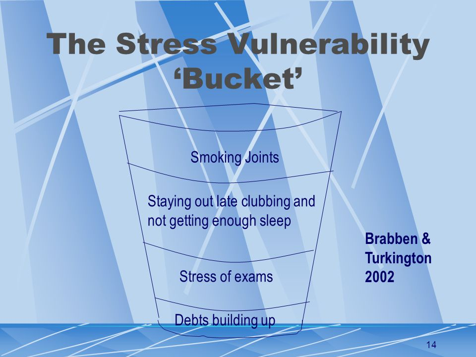 14 The Stress Vulnerability 'Bucket' Smoking Joints Staying out late clubbing and not getting enough sleep Stress of exams Debts building up Brabben & Turkington 2002