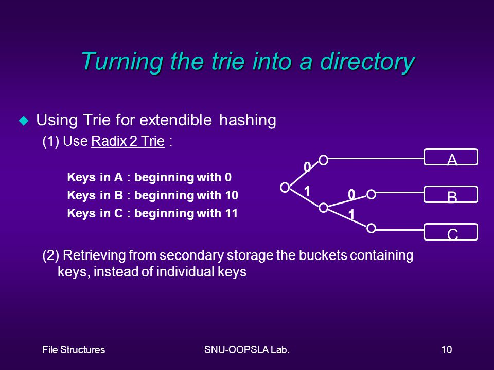 File StructuresSNU-OOPSLA Lab.10 Turning the trie into a directory u Using Trie for extendible hashing (1) Use Radix 2 Trie : Keys in A : beginning with 0 Keys in B : beginning with 10 Keys in C : beginning with 11 (2) Retrieving from secondary storage the buckets containing keys, instead of individual keys A B C 0 1 0 1