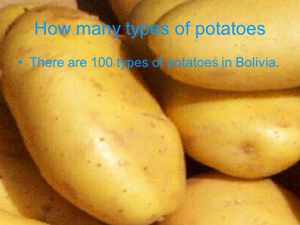 One U.S. Dollar Equals One U.S. dollar equals 7.2 Bolivian Bolivians.