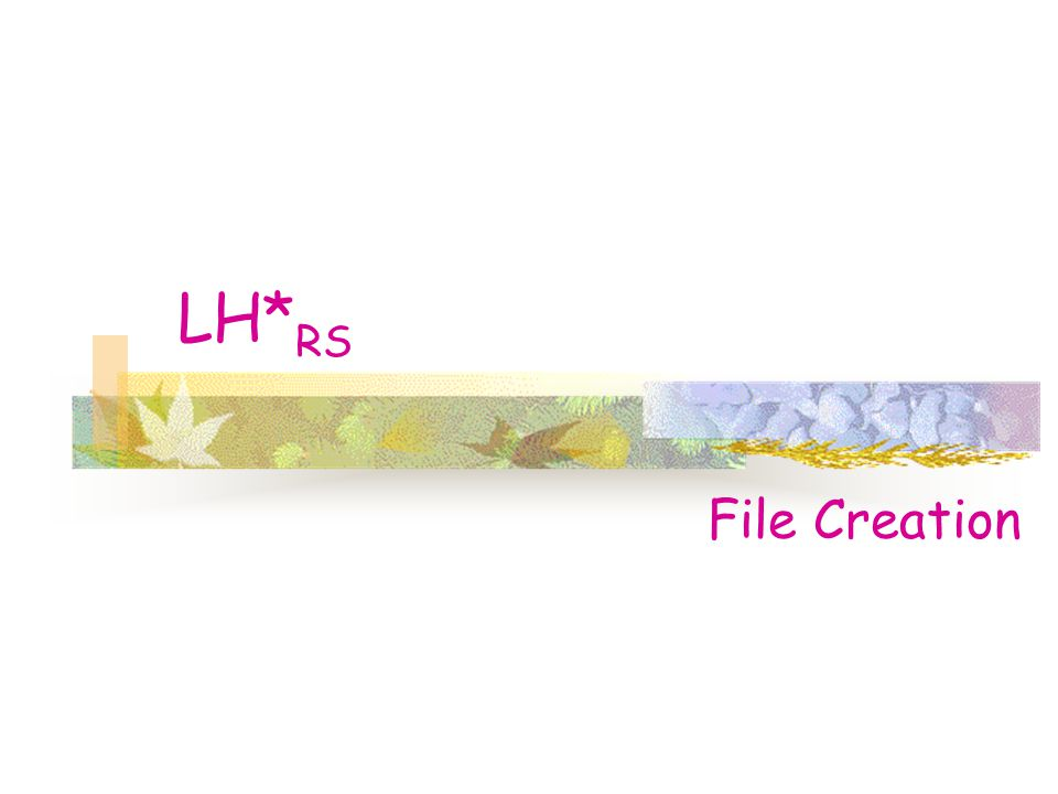 LH* RS File Creation