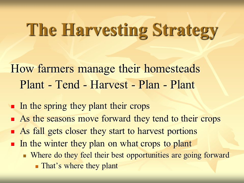 Harvesting Strategy Fund A down 25% - Fund B down 20% Plant 50% of Safety Bucket - 25% to each Fund * Again we have created the ability to redeploy gain when/if it is suitable.