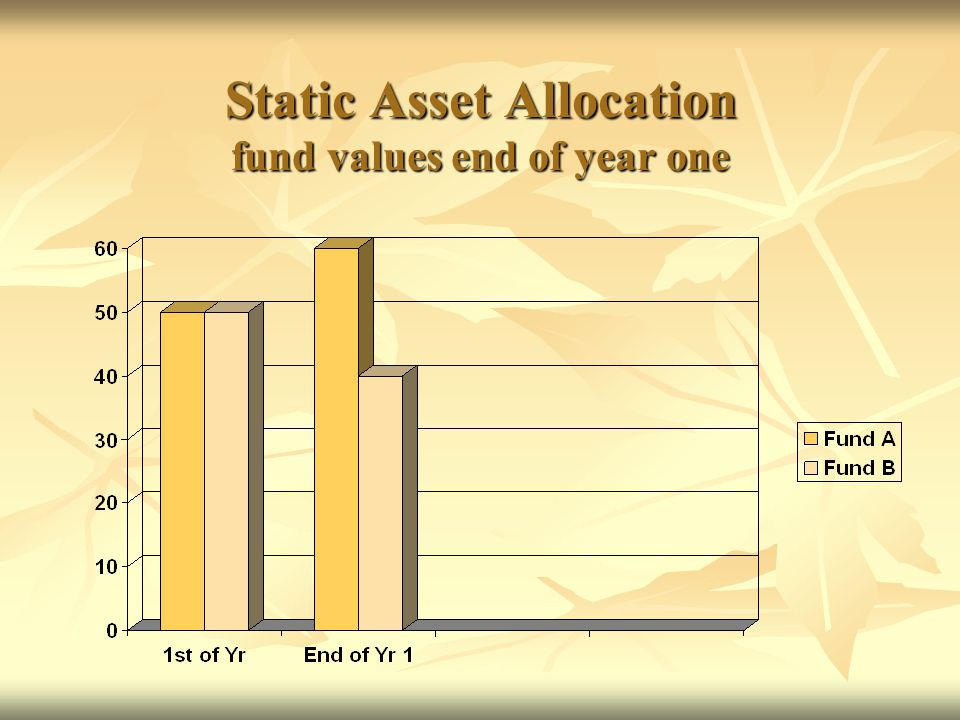 Static Asset Allocation fund values end of year one