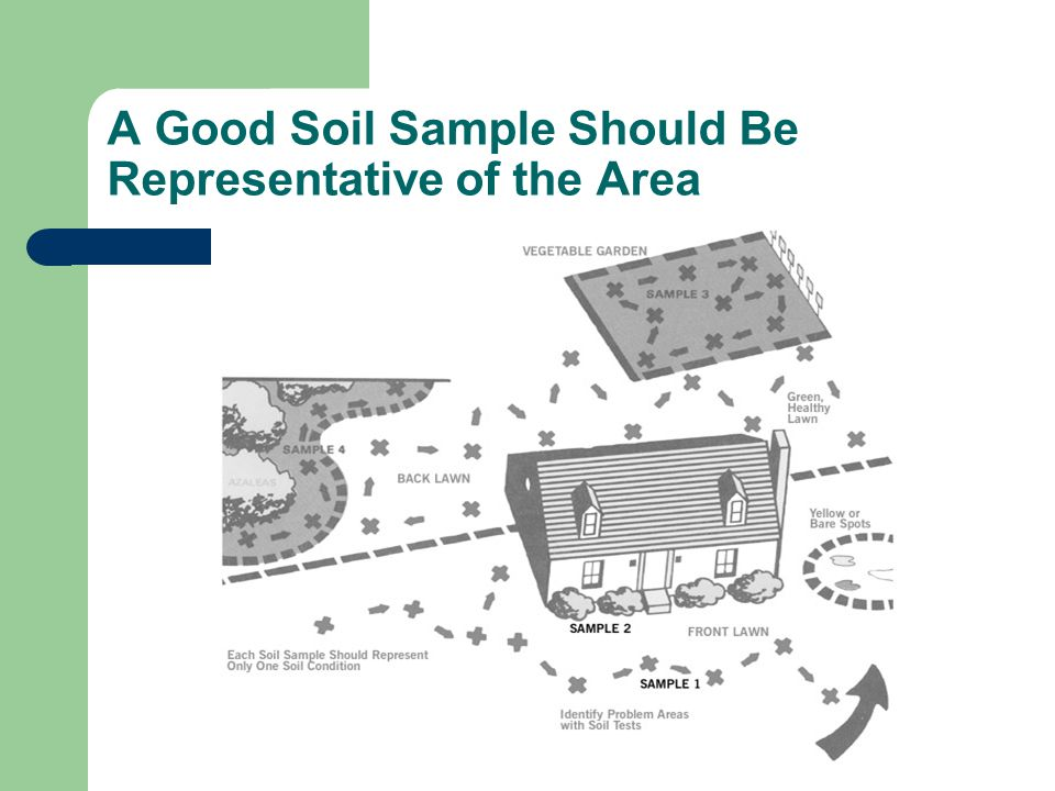 A Good Soil Sample Should Be Representative of the Area