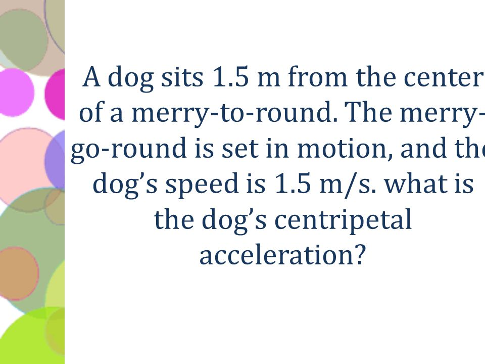 A dog sits 1.5 m from the center of a merry-to-round.