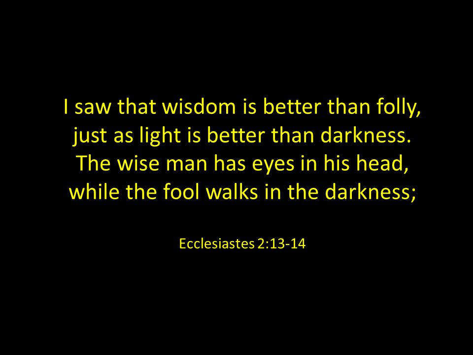 I saw that wisdom is better than folly, just as light is better than darkness.