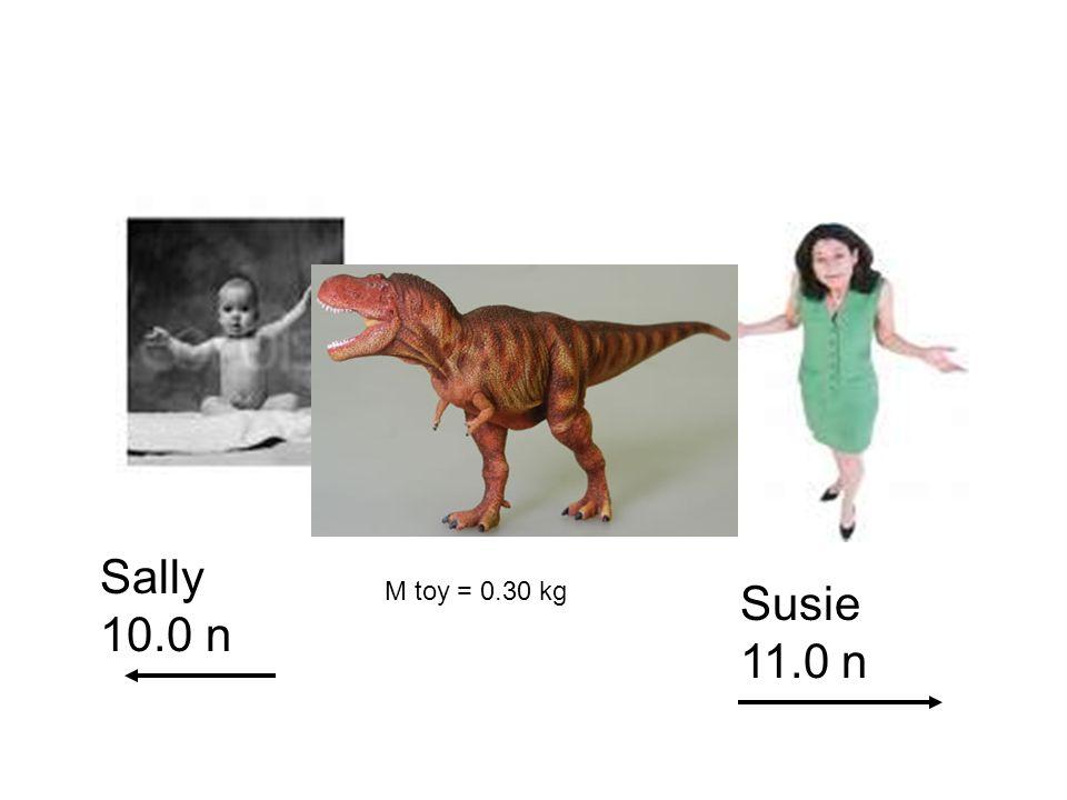 Sally 10.0 n Susie 11.0 n M toy = 0.30 kg