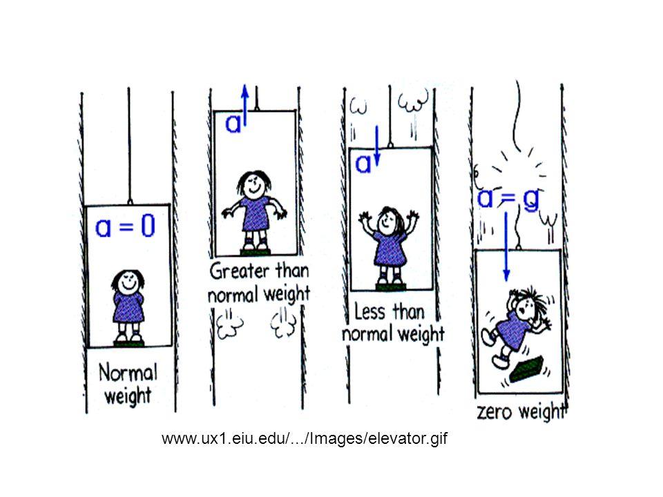 www.ux1.eiu.edu/.../Images/elevator.gif