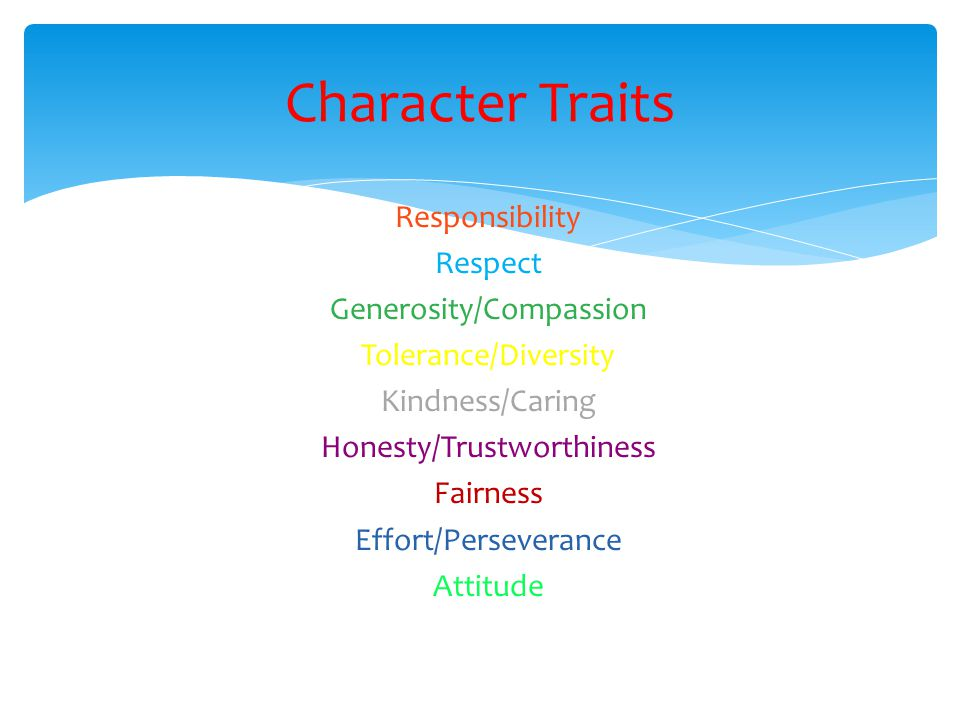 Responsibility Respect Generosity/Compassion Tolerance/Diversity Kindness/Caring Honesty/Trustworthiness Fairness Effort/Perseverance Attitude Charact