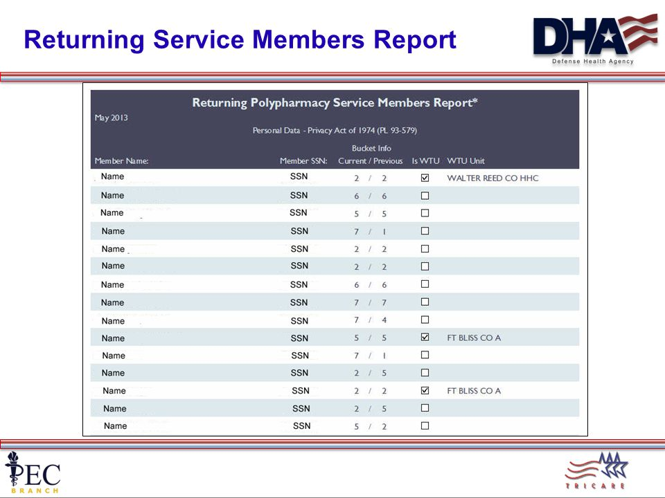 Returning Service Members Report