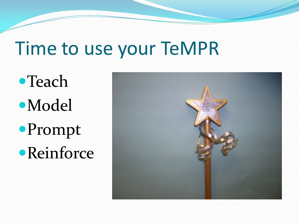 Time to use your TeMPR Teach Model Prompt Reinforce
