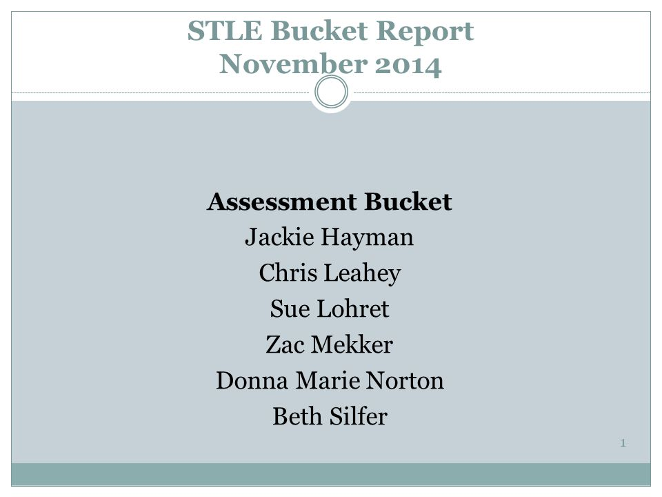 STLE Bucket Report November 2014 Assessment Bucket Jackie Hayman Chris Leahey Sue Lohret Zac Mekker Donna Marie Norton Beth Silfer 1