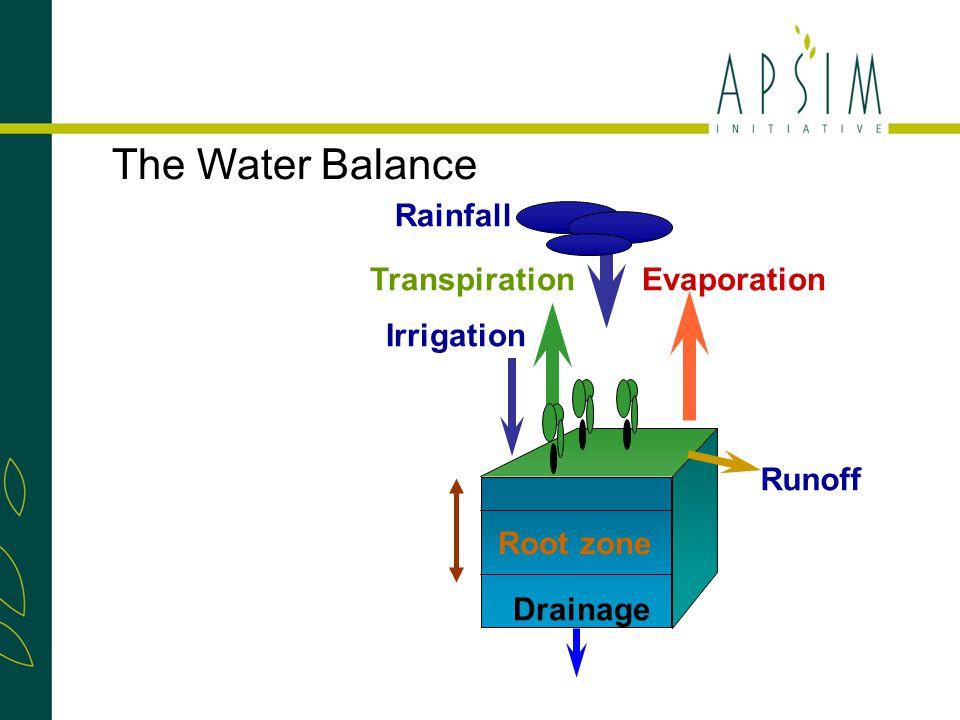 TranspirationEvaporation Rainfall Runoff Drainage Irrigation Root zone The Water Balance