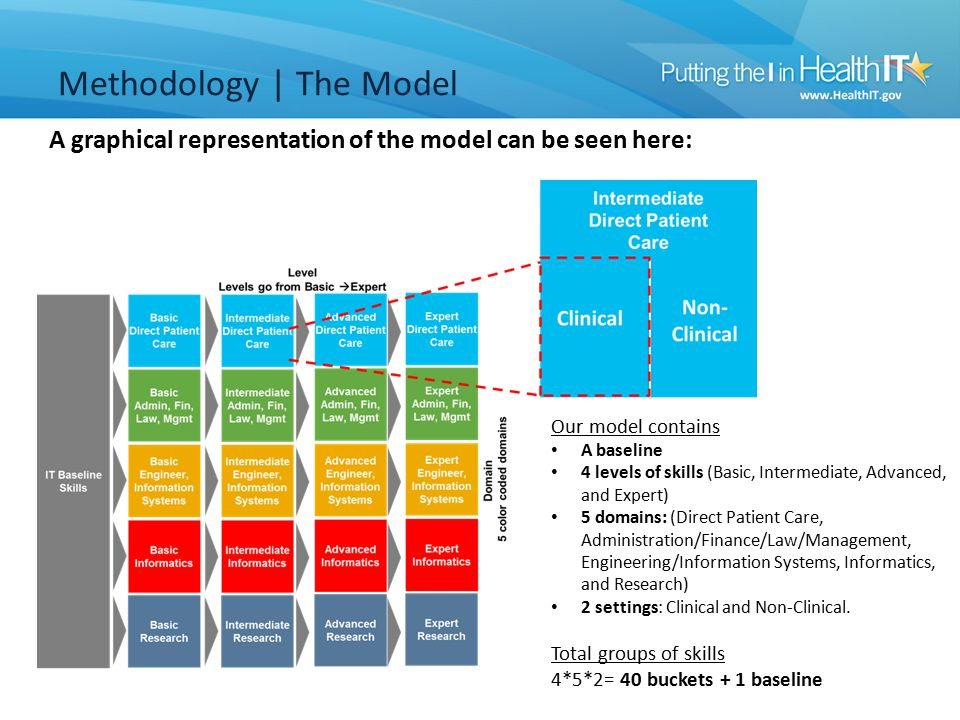 A graphical representation of the model can be seen here: Methodology | The Model Our model contains A baseline 4 levels of skills (Basic, Intermediate, Advanced, and Expert) 5 domains: (Direct Patient Care, Administration/Finance/Law/Management, Engineering/Information Systems, Informatics, and Research) 2 settings: Clinical and Non-Clinical.