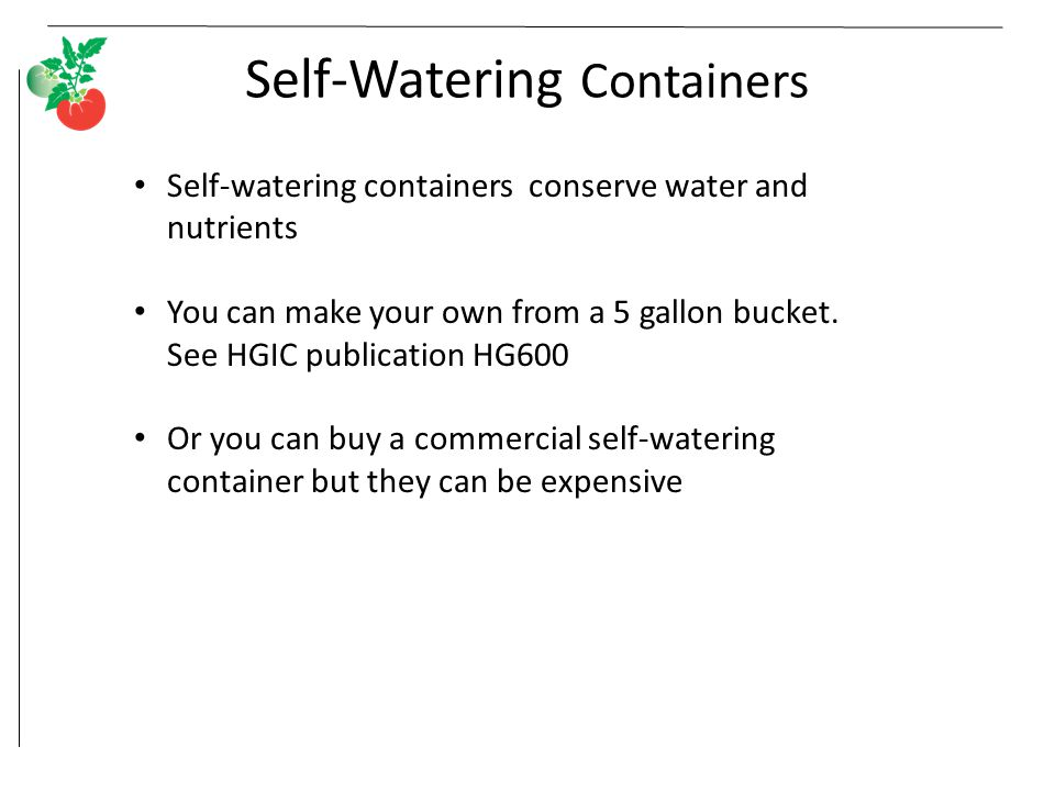 Self-Watering Containers Self-watering containers conserve water and nutrients You can make your own from a 5 gallon bucket.